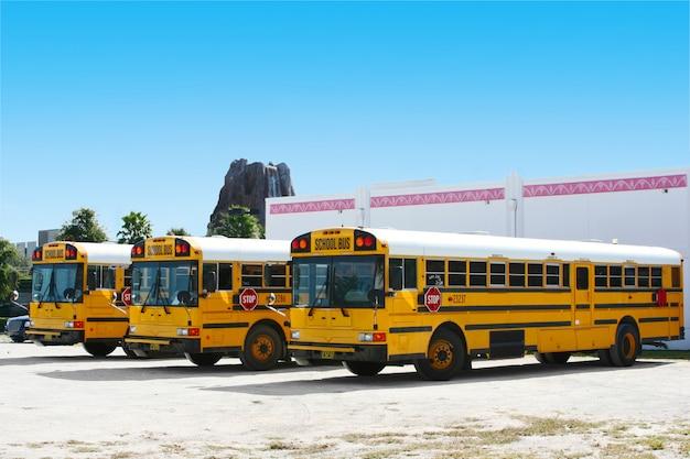 Autobusy szkolne w orlando, floryda, usa