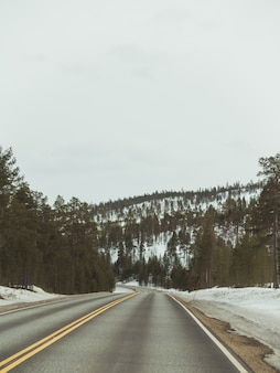 Autostrada w centrum zaśnieżonego lasu pod ciemnym niebem