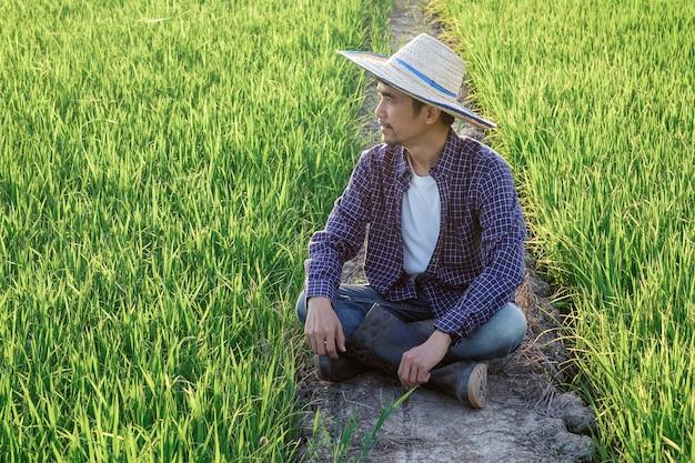 Azjata ubrany w niebieską koszulę w paski siedzi radośnie oglądając produkty na polu ryżowym.