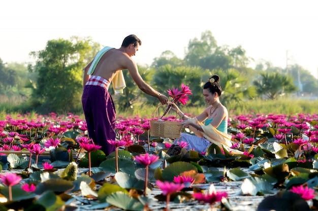 Azjatyccy mężczyźni zbierają czerwone kwiaty lotosu dla azjatyckich kobiet.
