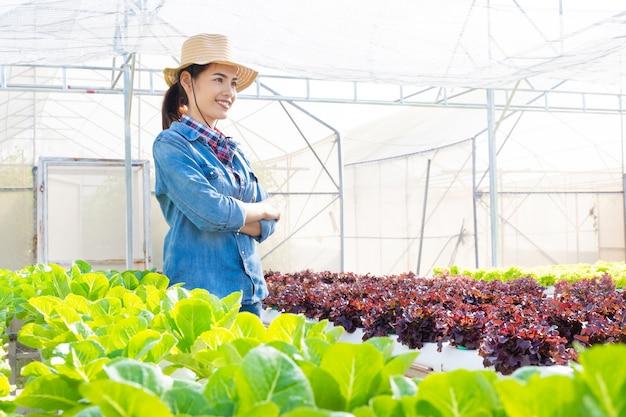Azjatyccy rolnicy przy hydroponicznym warzywo sałatką uprawiają ziemię.