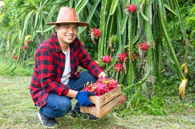 Azjatyccy rolnicy z owocem smoka w ogrodzie