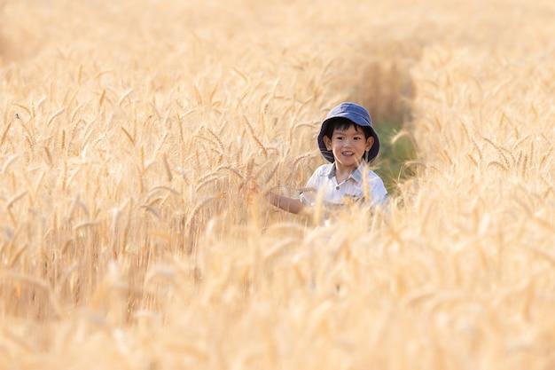 Azjatycka chłopiec ma zabawę i bawić się w pszenicznym polu na lecie.