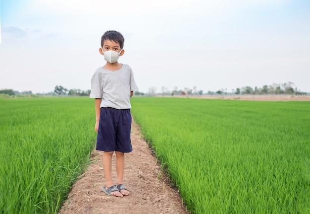 Azjatycka chłopiec odzieży twarzy maski pozycja przy ryżu gospodarstwem rolnym. zdrowa koncepcja