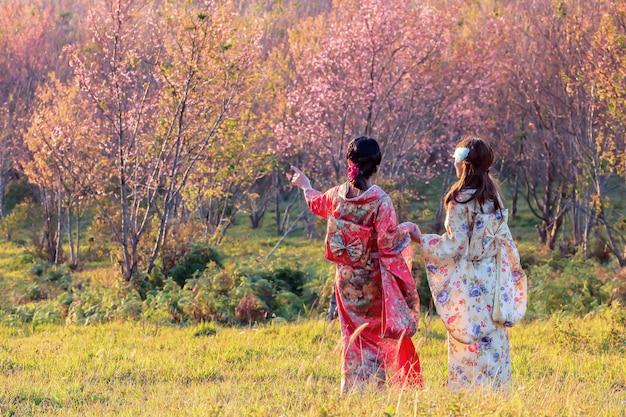 Azjatycka kobieta jest ubranym japońskiego tradycyjnego kimono przy sakura ogródem.