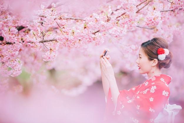Azjatycka kobieta jest ubranym kimono używać smartphone z czereśniowymi okwitnięciami, sakura w japonia.