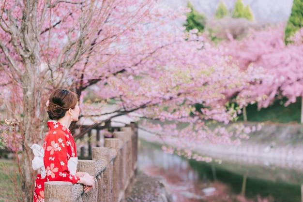 Azjatycka kobieta jest ubranym kimono z czereśniowymi kwiatami, sakura w japonia.