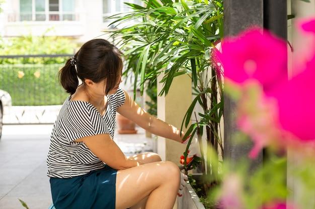 Azjatycka kobieta nosi rękawiczki ogrodowe i używa nożyc do przycinania, które przycinają palmę w domu. zablokuj malezyjską dziewczynę w ogrodzie.