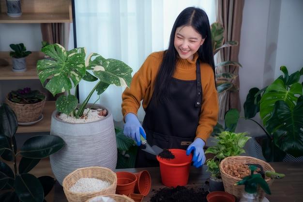 Azjatycka kobieta sadzi drzewo w swoim pokoju w swoim kondominium, ten obraz może służyć do hobby, stylu życia, relaksu, wakacji i koncepcji wystroju