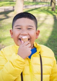 Azjatycka pyzata chłopiec je truskawkowego lody w parku