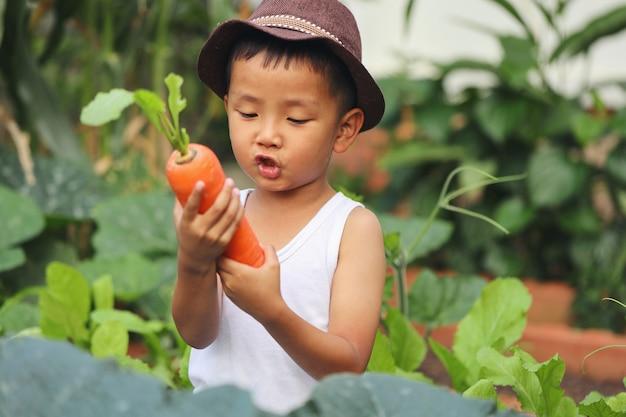 Azjatycki chłopiec niesie marchewkę zebraną z pola. z dumą wyhodował dużą marchewkę.