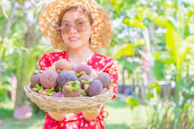 Azjatycki kobieta agriculturist pokazuje mangostany w koszu