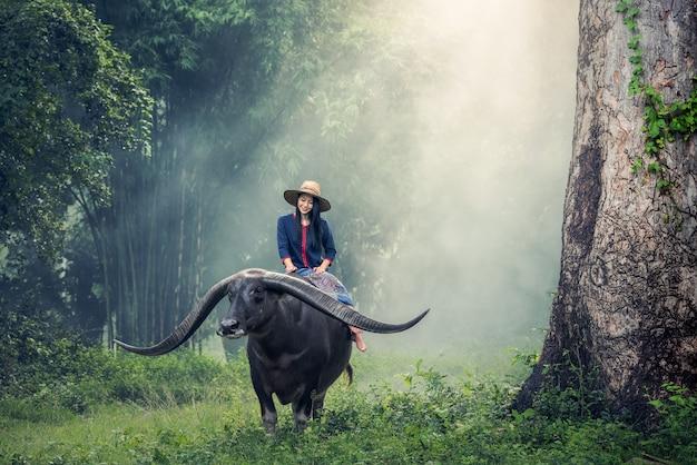 Azjatycki kobieta rolnik z bizonem