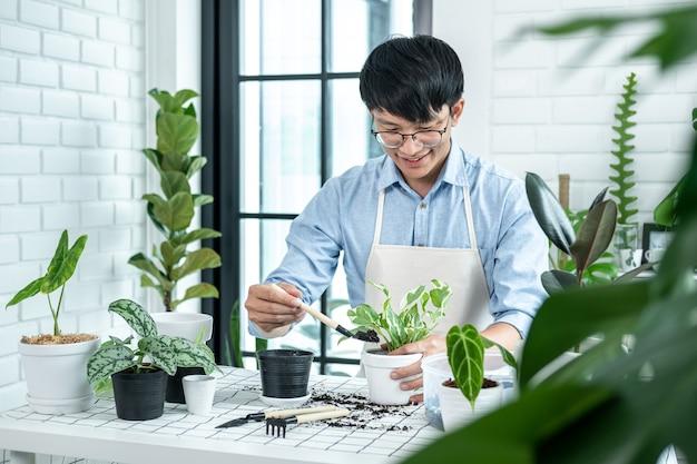 Azjatycki mężczyzna ogrodnik za pomocą łopaty do przesadzania roślin do nowej doniczki i dbania o rośliny w pokoju w domu podczas hobby, koncepcja ogrodu domowego