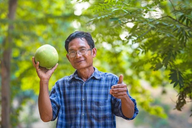 Azjatycki mężczyzna starszy rolnik z pomelo zielenią