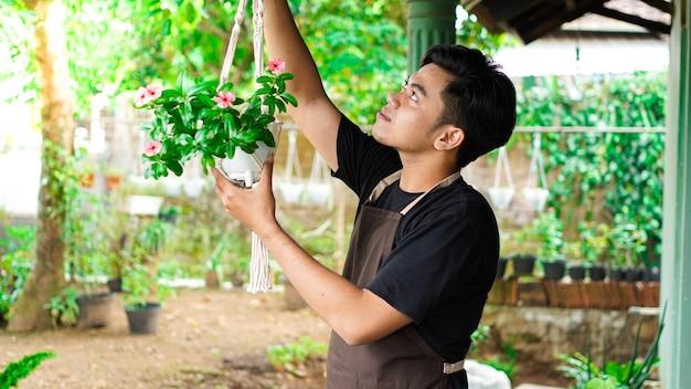 Azjatycki mężczyzna wiszące rośliny w domu stanowią piękną dekorację