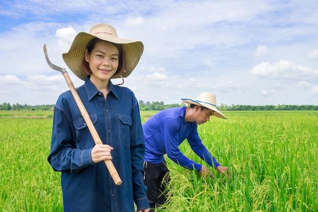 Azjatycki rolnik, kobieta trzymająca sprzęt rolniczy stojący uśmiechnięty na zielonych polach ryżowych a z tyłu zbierani byli mężczyźni