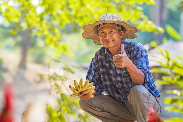 Azjatycki średniorolny mienie banan w rolnictwo owoc ogródzie