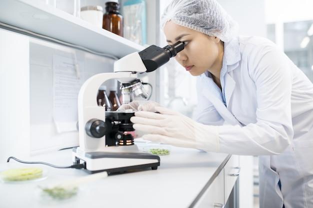 Azjatycki żeński naukowiec używa mikroskop