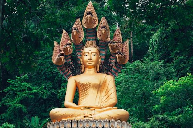 Azjatycki złoty buddha w lesie