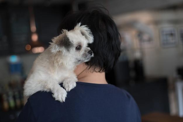 Azjatyckie kobiety i pies tak słodkie mieszane rasy w kawiarni kawiarni