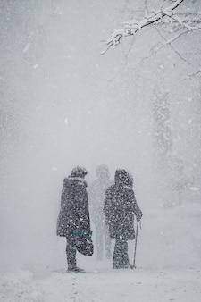 Babcie chodzą po parku podczas opadów śniegu.