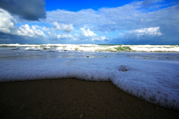 Bąbelki morskie na piasku.