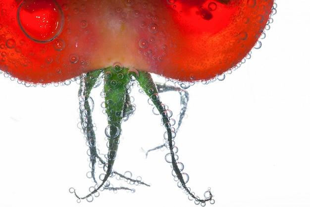 Bąbelki powietrza pokrywają zielone liście czerwonego pomidora unoszącego się w wodzie