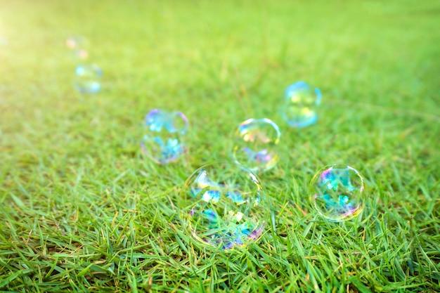 Bąble mydlane kłaść na zielonej trawy tle.