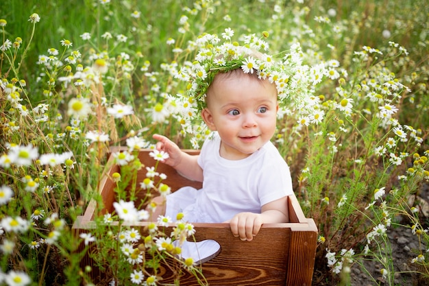Baby with daisies in summer baby sitting in a field with flowers