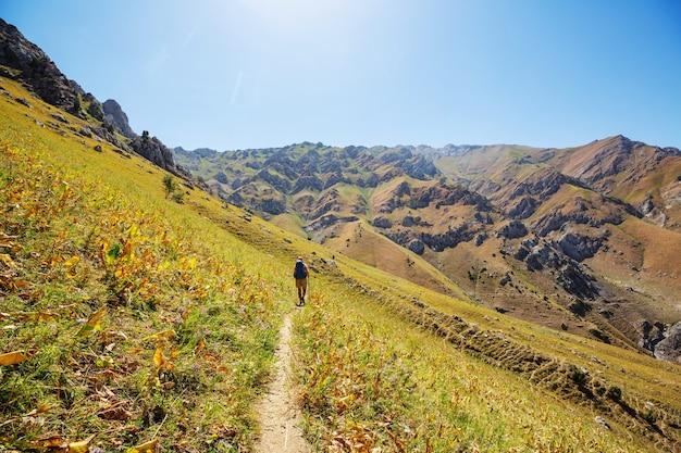 Backpacker w letnich górach