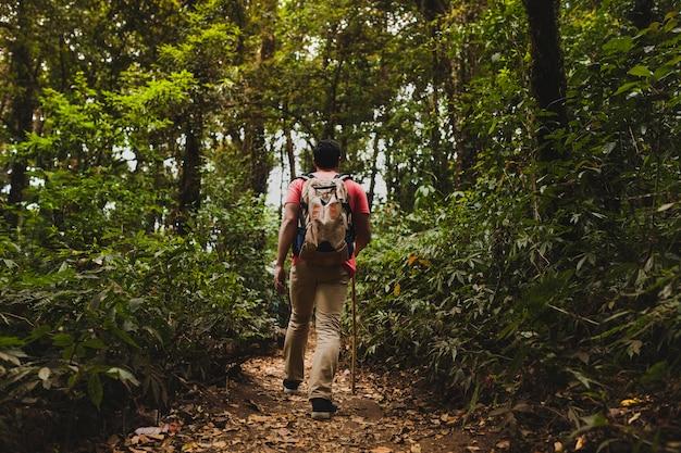 Backpacker wędrówki w lesie