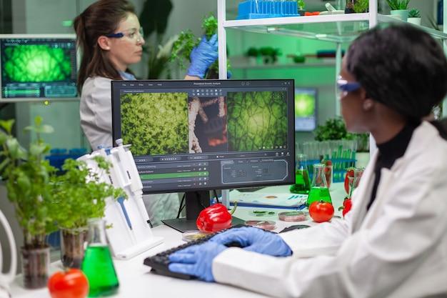 Badacz biolog wpisujący ekspertyzę gmo na komputerze do naukowego eksperymentu mikrobiologicznego
