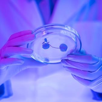 Badacz trzymający szalkę petriego w laboratorium