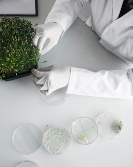 Badacz w laboratorium biotechnologicznym