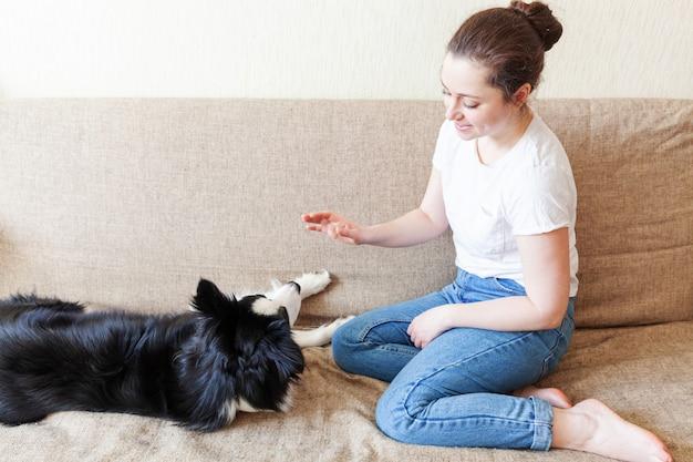 Bądź w domu bądź bezpieczny. uśmiechnięta młoda atrakcyjna kobieta bawić się z ślicznym szczeniaka psa border collie na leżance w domu indoors. dziewczyna ściska nowego uroczego członka rodziny opieki nad zwierzętami kwarantanny życia zwierząt
