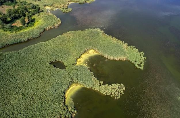 Bagniste jezioro, fotografia lotnicza, w letni dzień, zdjęcie w tle