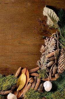 Bajkowa atmosfera magiczny jesienny las w tle