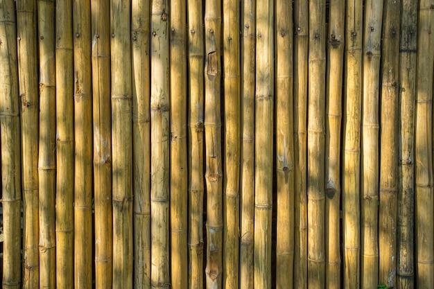 Bambus ściana jako backgroud tekstura