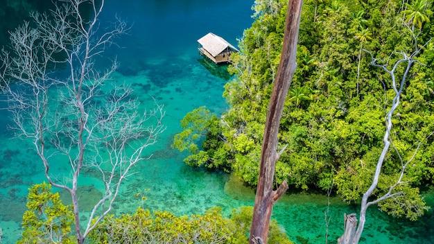 Bambusowa chata w namorzynach w pobliżu warikaf homestay, kabui bay i passage. gam island, west papuan, raja ampat, indonezja.