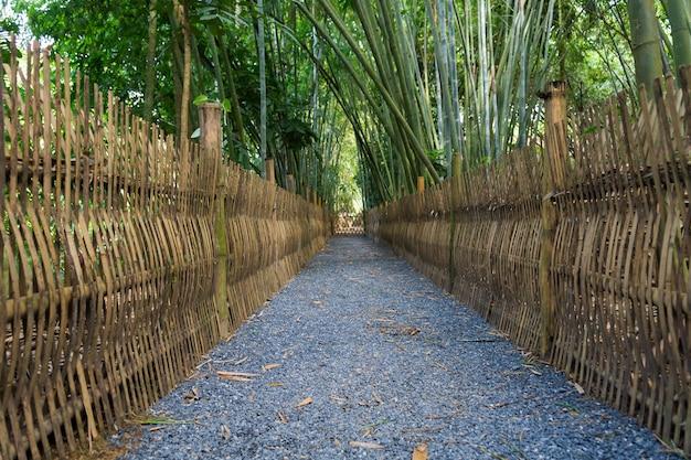 Bambusowa lasowa ścieżka w phatthalung thailand