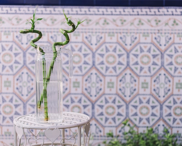 Bambusowa roślina w szkle