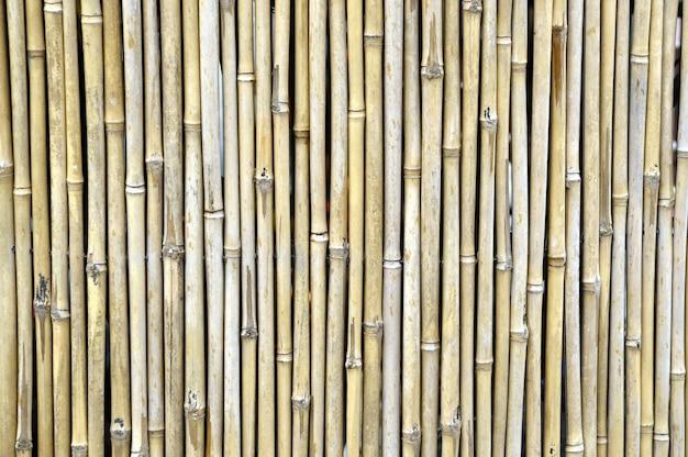Bambusowe ogrodzenie w ogrodzie japońskim