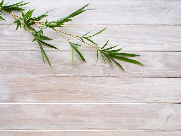 Bambusowi liście na biały drewnianym