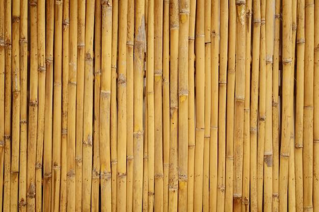 Bambusowy dom na ścianie