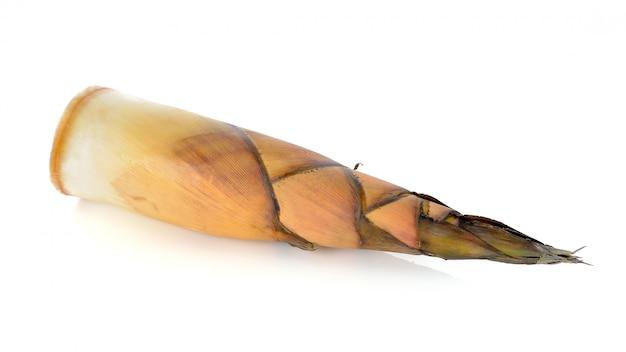 Bambusowy krótkopęd na białym tle
