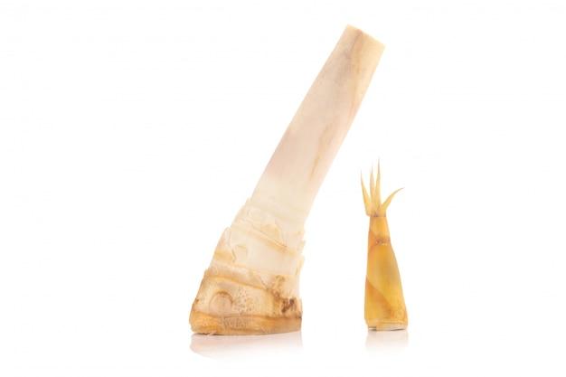 Bambusowy krótkopęd odizolowywający na białym tle