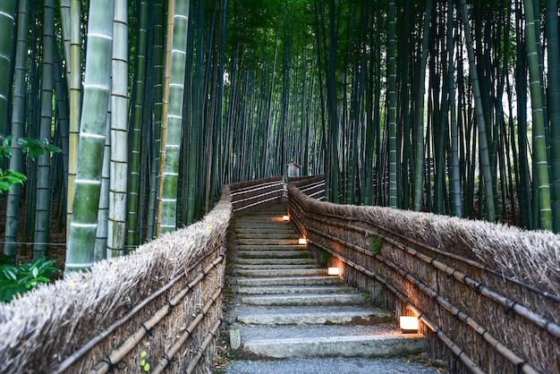 Bambusowy las przy adashino nenbutsu-ji świątynią, kyoto japan