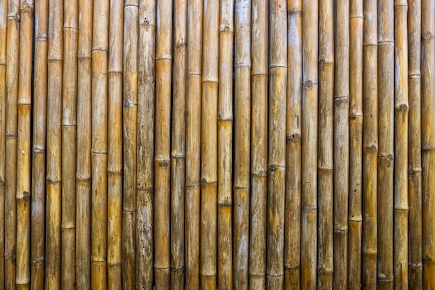 Bambusowy płot tło na tapetę. stary żółty drewniany wzór teksturowanej.