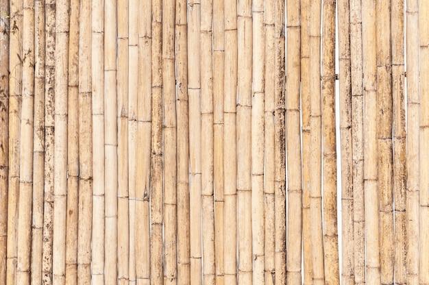 Bambusowy płot tło